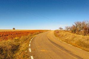 curve in a rural road