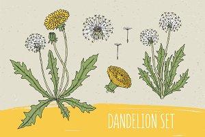 Dandelion set and seamless pattern