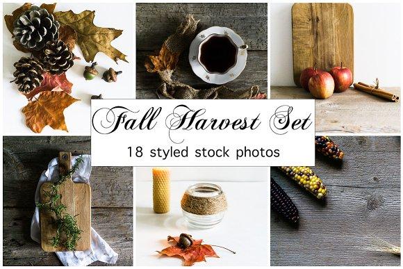 Fall Photo Bundle