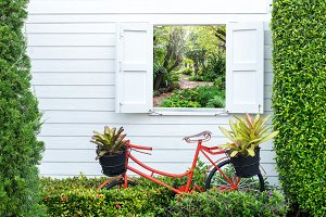 Decorate gardening