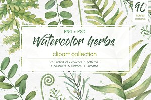 Watercolor herbs. Clipart collection