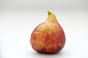 one fresh fig on white Background