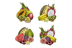 Vector exotic fresh tropical fruits