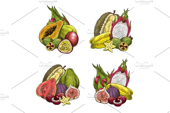 Vector exotic fresh tropical fruits in Illustrations