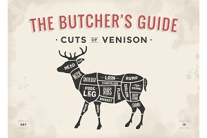 Cut of meat set. Poster Butcher diagram, scheme - Venison