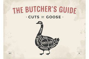 Cut of meat set. Poster Butcher diagram, scheme - Goose