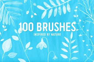 100 PS nature brushes