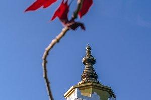 Peace Pagoda Flower
