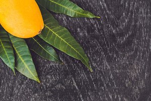 BANNER Mango and mango leaves on an old wooden background Long Format