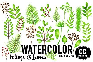 Watercolor Foliage Leaves Graphics
