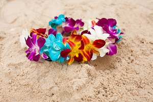 Colorful bright flower diadem