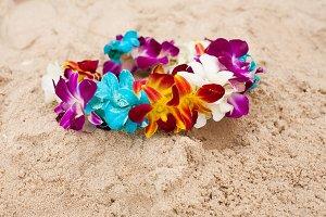 Colorful bright flower diadem