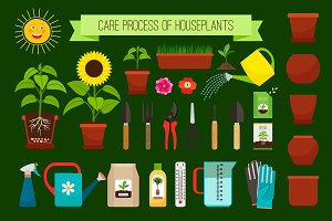 Houseplants care process icons