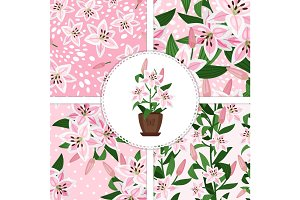 Pink lily icon and patterns collection