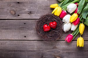Decorative hearts in nest and tulips