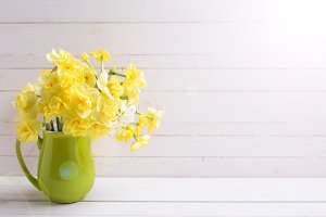 Yellow narcissus flowers in pitcher
