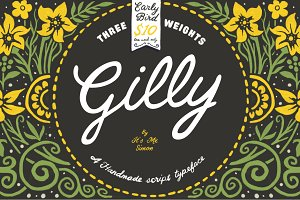 Gilly Script handmade typeface