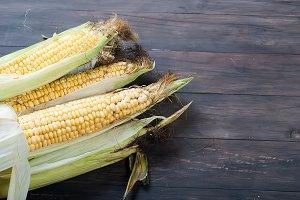 Swet fresh corn