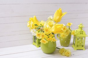 Yellow bright flowers