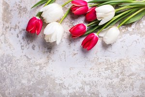 Red and white tulips flowers