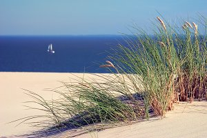 A sailboat in the sea and dunes