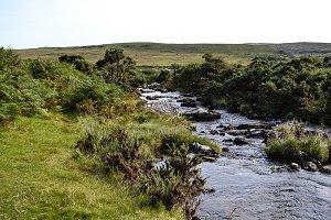 River Running Through Dartmoor