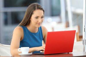 Single serious woman typing