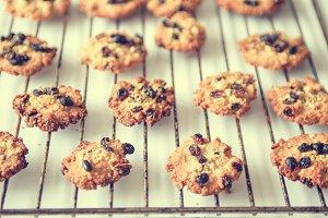 Freshly baked oatmeal cookies