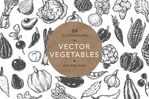Vector Vegetables. Illustrations.