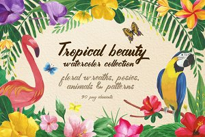 Tropical beauty, png elements.