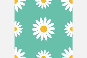 Daisy butterfly seamless pattern set