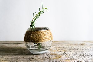 Rosemary Sprig in Jar