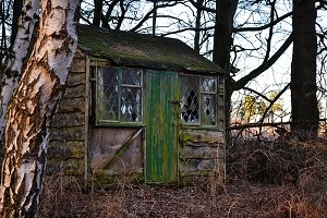 Old Shed With Green Door
