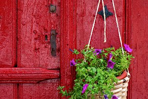 Door with flowers