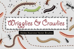 Wriggles Crawlies Brushes