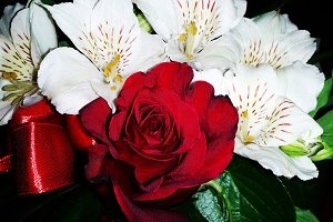 Alstroemeria red rose flower floral bouquet composition photo