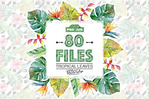 Tropical leaves PNG watercolor set
