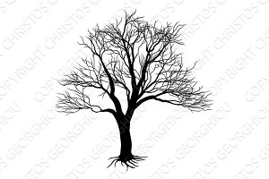 Bare tree silhouette