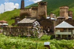 Svan fortresses to Mestia Ushguli village Georgia