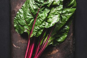 Swiss chard leaves on dark background