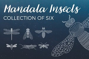 Mandala Insects Illustrations