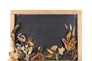 Autumn season blackboard