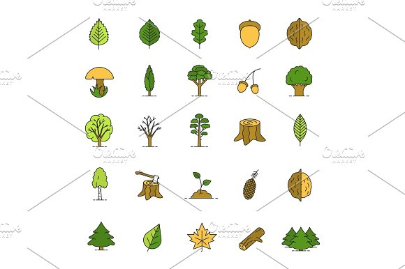 Tree Types Color Icons Set