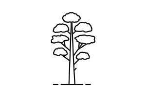 Pine tree linear icon