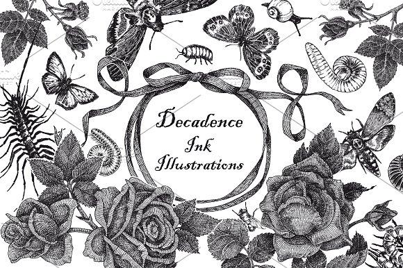 Decadence Ink Illustrations