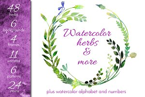 Watercolor Herbs and More