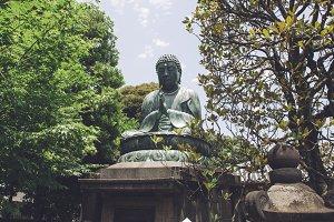 Buda between vegetation