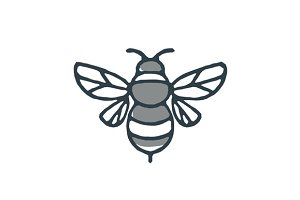 Bumblebee Bee Icon