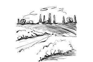 Landscape sketch. Tree and fields