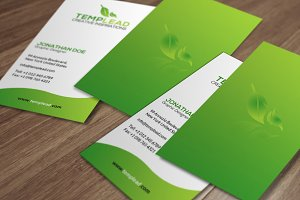 Corporate Business Card SE0261